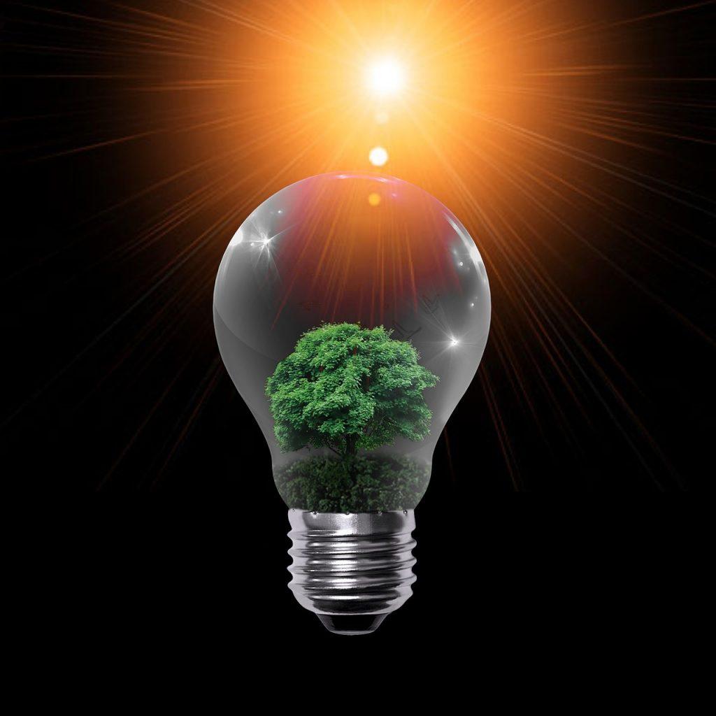 פיתוח חשיבה יצירתית - טל מזור